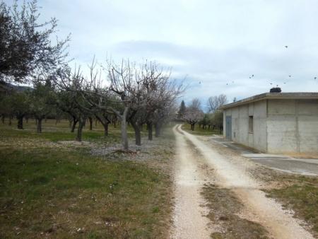 Fabbricato e Terreno Civitaquana