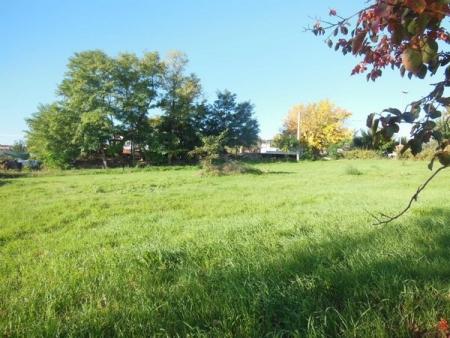Terreno edificabile a Nocciano (PE)