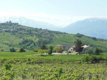 Business farm in Corvara (PE)