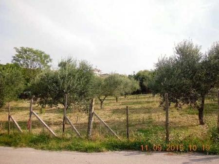 Land in Cepagatti (PE)